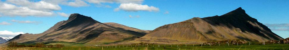 Erlingur Alfreð Jónsson - Hausmynd